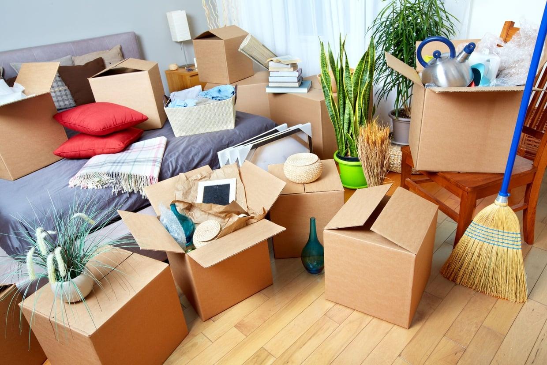 Devis déménagement : et si vous faisiez appel à une équipe de déménageurs professionnels ?